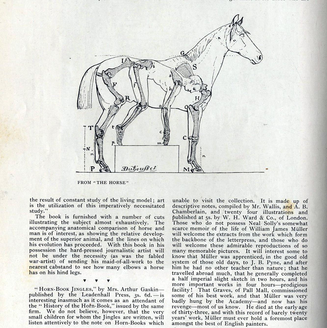 tf rodeo workshop manual pdf