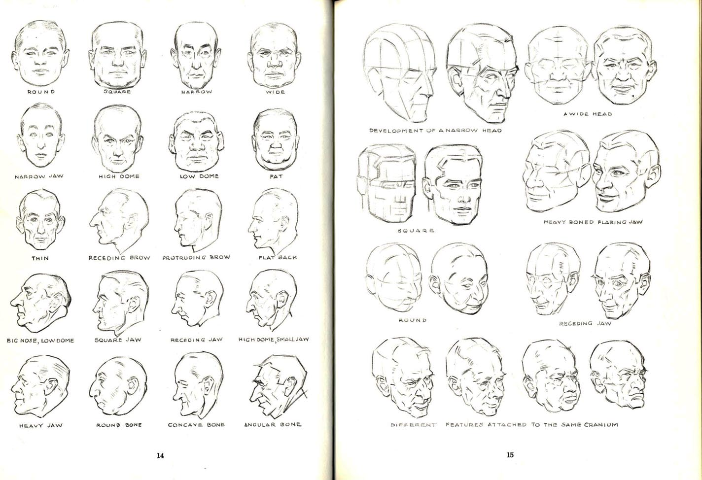 Artists Manuals Drawing The Head And Hands Andrew Loomis 1956