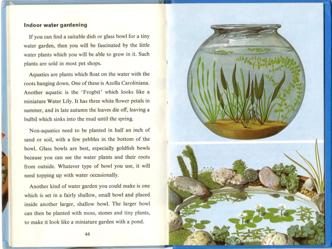 Indoor Gardening Books Ladybird books indoor gardening 1968 ladybird books indoor gardening 1968 workwithnaturefo