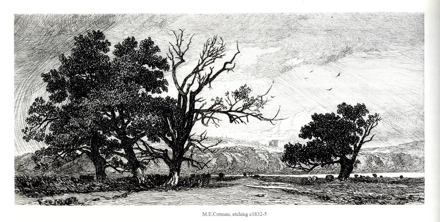 Trees, Oak tree and Etchings on Pinterest